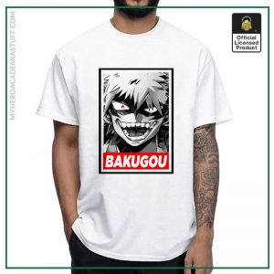 24763 ewvly7 - BNHA Store